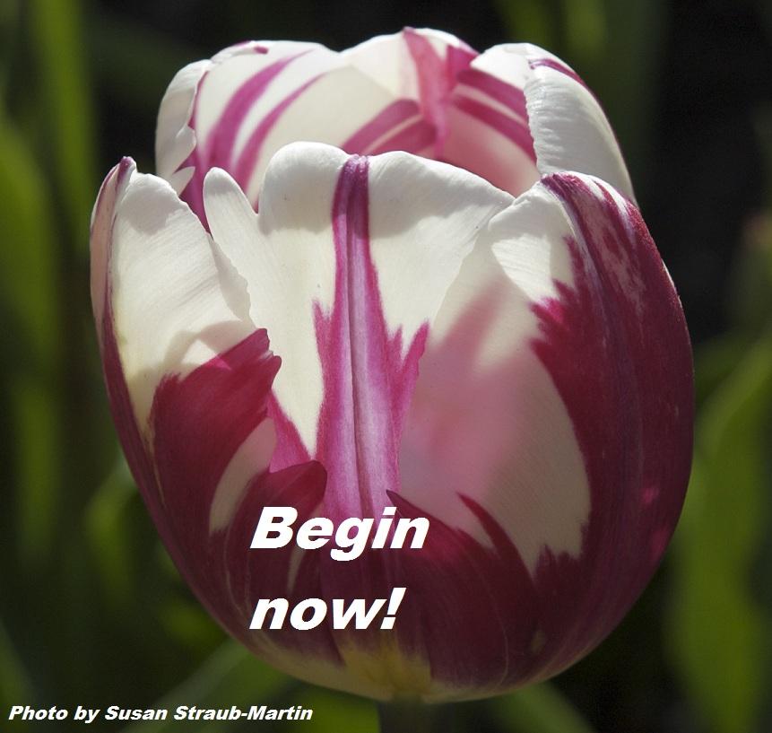 Begin now
