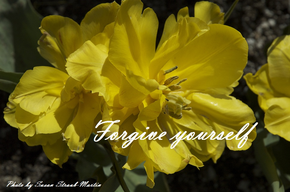 20120922 Forgive yourself