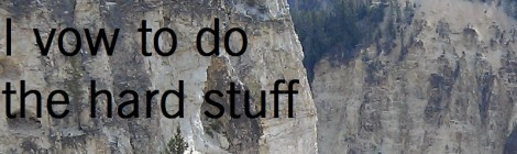 I vow to do the hard stuff