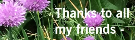 Thanks to all my friends