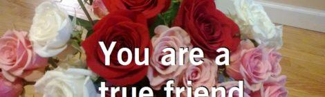 You are a true friend