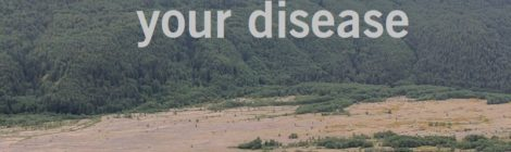You are not your disease