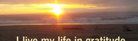 I live my life in gratitude