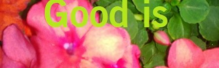 Good is good enough for me