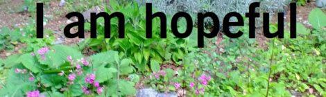 I am hopeful