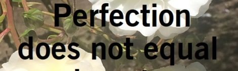 Perfection does not equal beauty