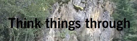 Think things through
