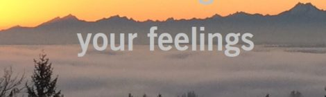 Your feelings are your feelings