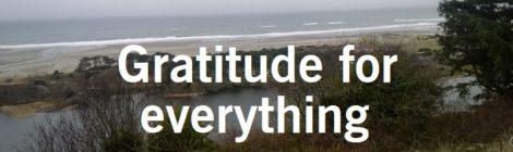 Gratitude for everything
